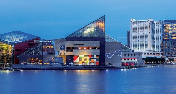 Baltimore National Aquarium from the hotel (family pkg) (1)